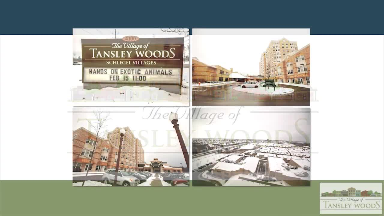 The Village Of Tansley Woods - Video 1