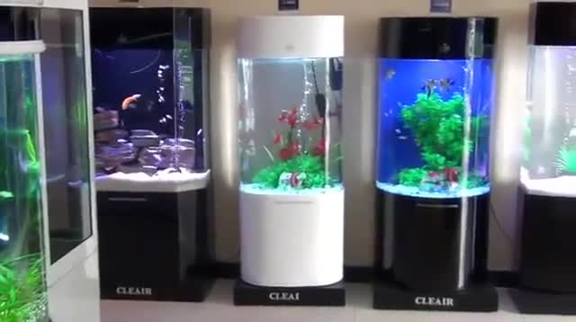 Cleair Aquatics - Aquariums & Supplies - 778-997-9839