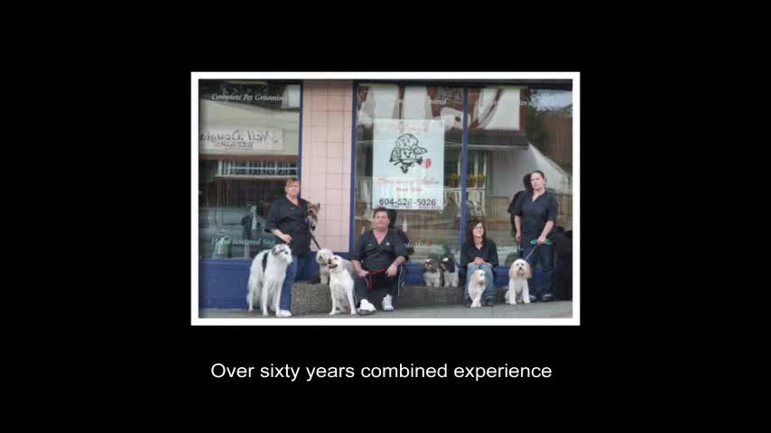 View Tiffany's Grooming Salon's Port Coquitlam profile