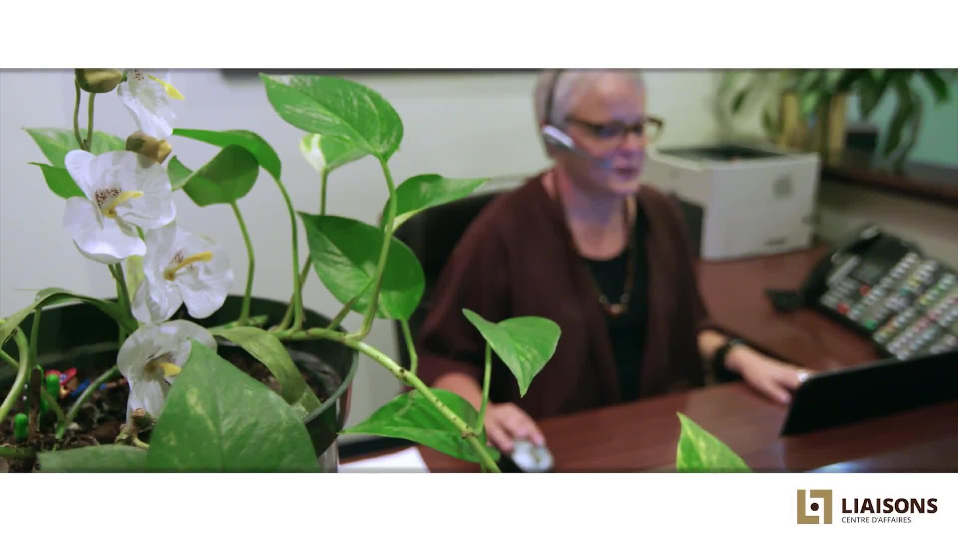 Liaisons Business Centre - Office & Desk Space Rental - 514-286-7544