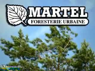 Martel Foresterie urbaine - Tree Service - 450-679-6770