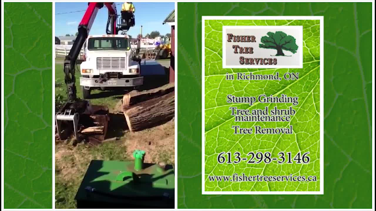 Fisher Tree Services - Tree Service - 613-298-3146