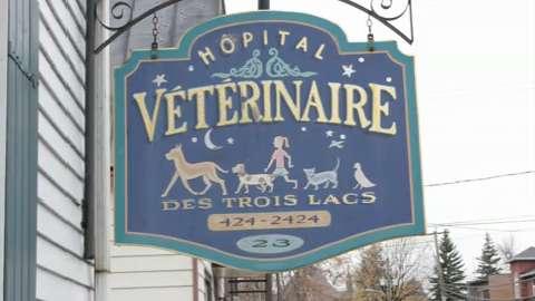 Hôpital Vétérinaire des Trois Lacs - Vidéo 1
