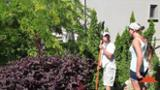 Apollo Landscaping - Landscape Contractors & Designers - 250-764-4141