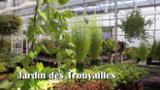 Jardin Des Trouvailles - Épiceries fines - 819-849-0299