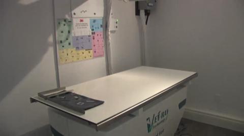 Clinique Vétérinaire Iberville - Vidéo 1