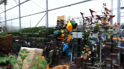 Wickham Nurseryland - Video 1