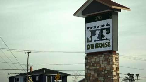 Hôpital Vétérinaire Du Boisé Inc - Vidéo 1