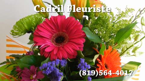 Cadril Fleuriste Enr - Vidéo 1