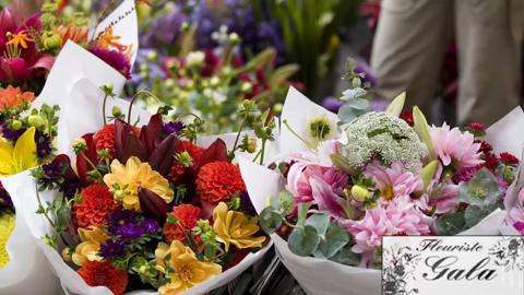 Florist Royal (Gala D'Outremont) - Vidéo 1