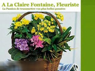 Fleuriste à la Claire Fontaine - Vidéo 1