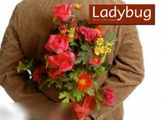 Ladybug Florist In the Village - Video 1