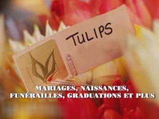 Fleuriste Des Halles - Vidéo 1