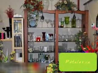 Fleuriste Pétales - Vidéo 1