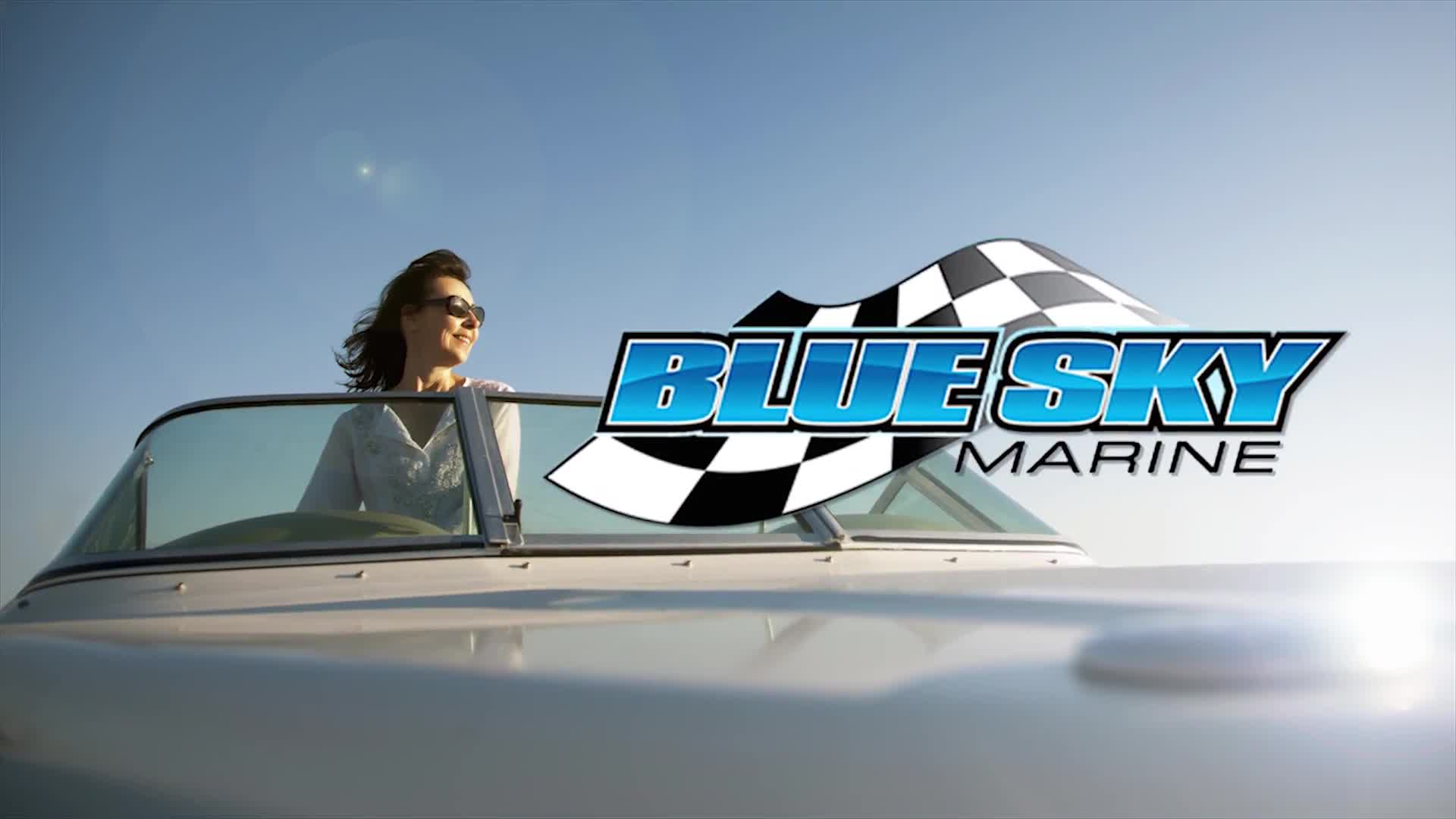 Blue Sky Marine - Snowmobiles - 519-662-1461