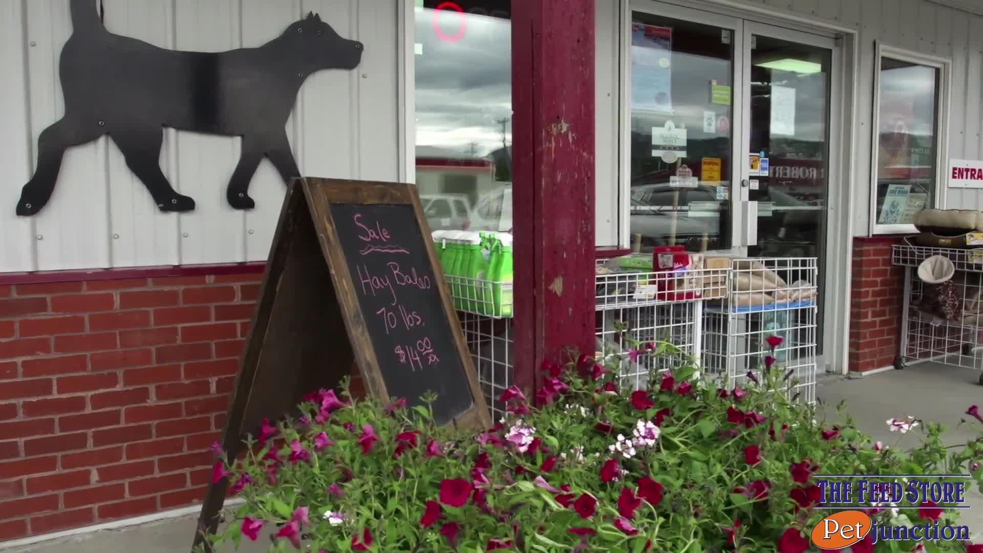 Feed Store The Pet Junction Whitehorse Yt 9006 Quartz