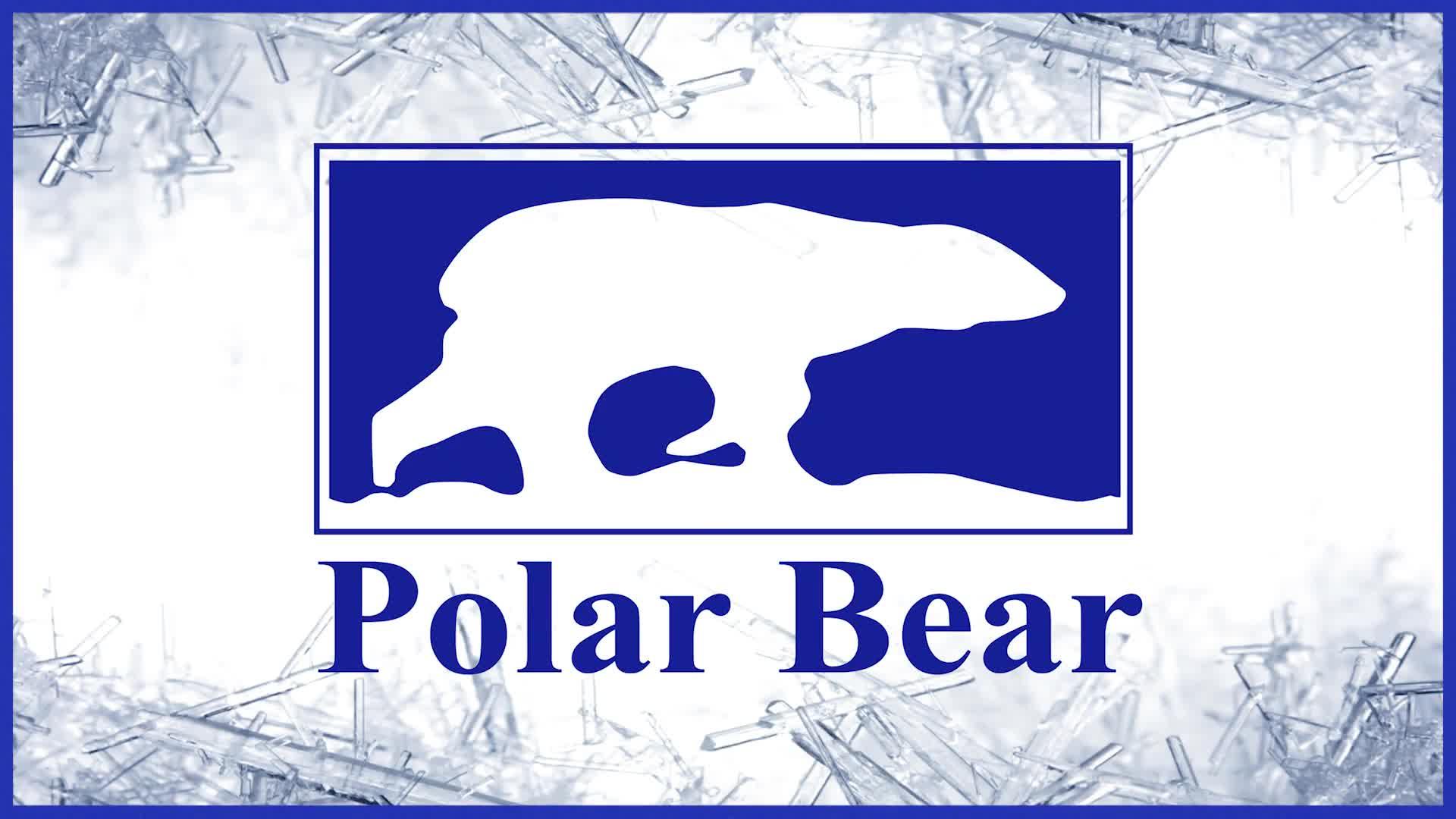Polar Bear Windows And Doors Timmins Opening Hours 324