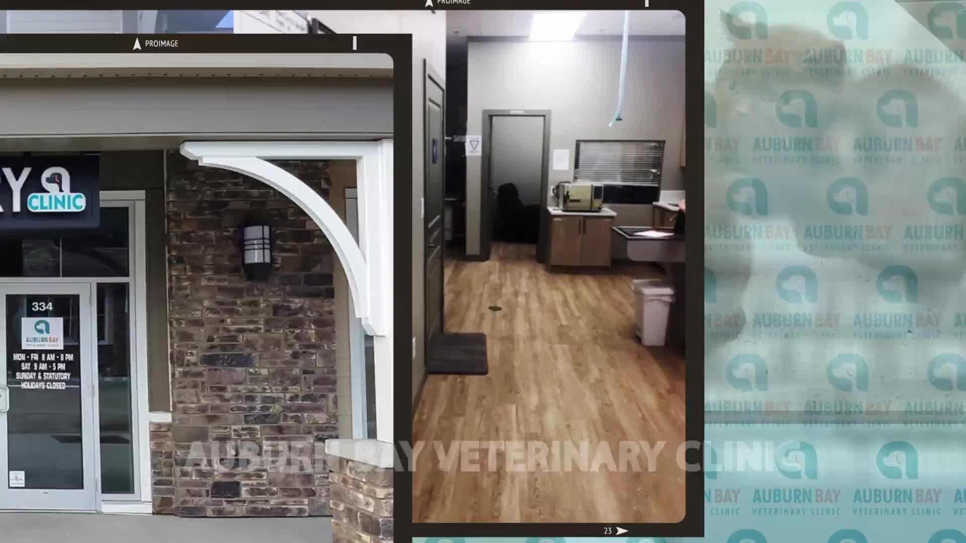 View Auburn Bay Veterinary Clinic's De Winton profile