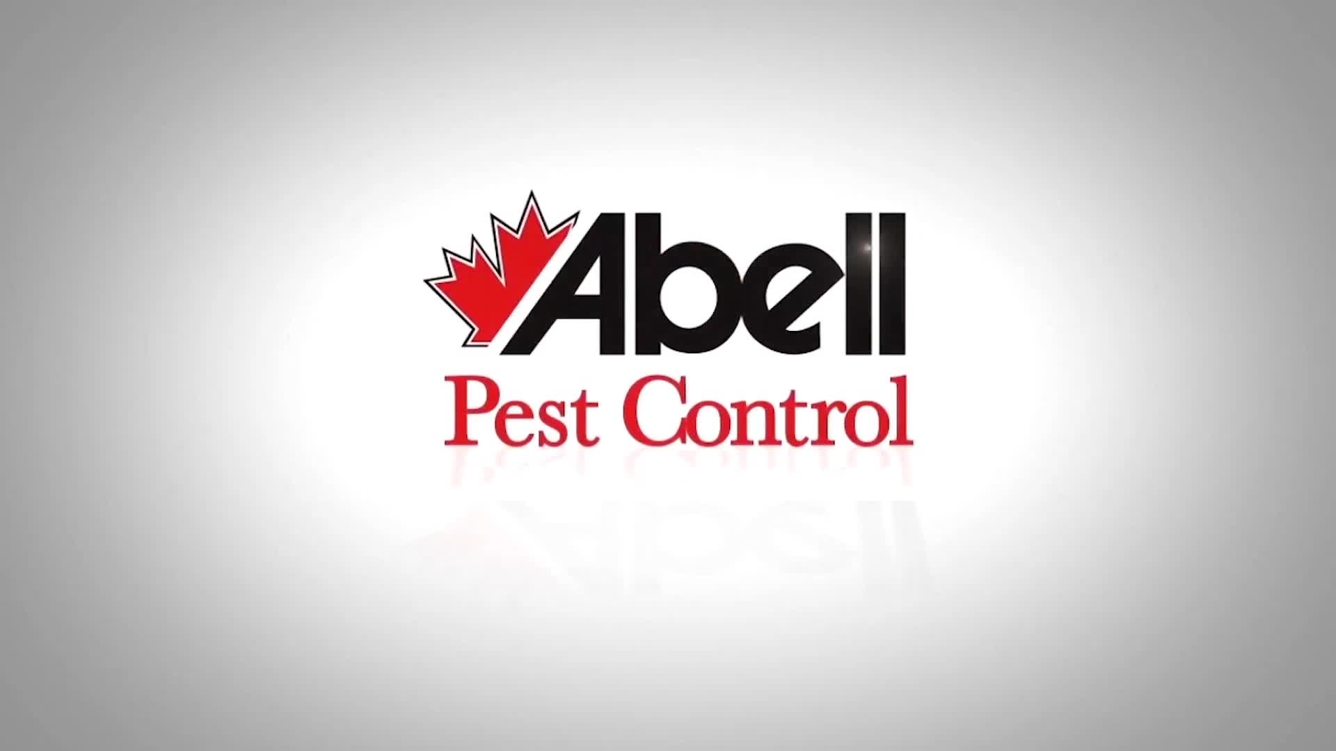 View Abell Pest Control's Whalley profile