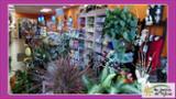 Au Jardin De Sylvie - Fleuristes et magasins de fleurs - 8196842772