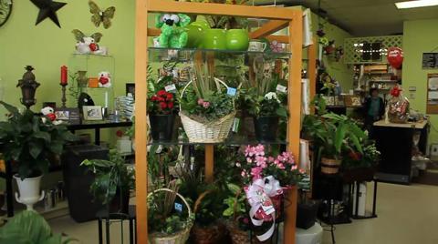 Petals N Pots Inc Opening Hours 725 Ottawa St